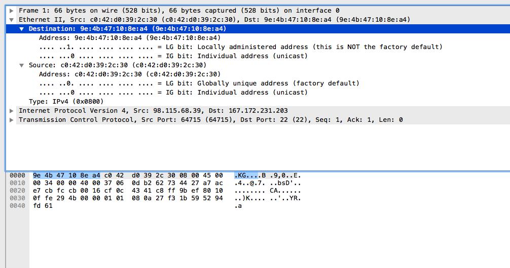 Wireshark Screen Capture